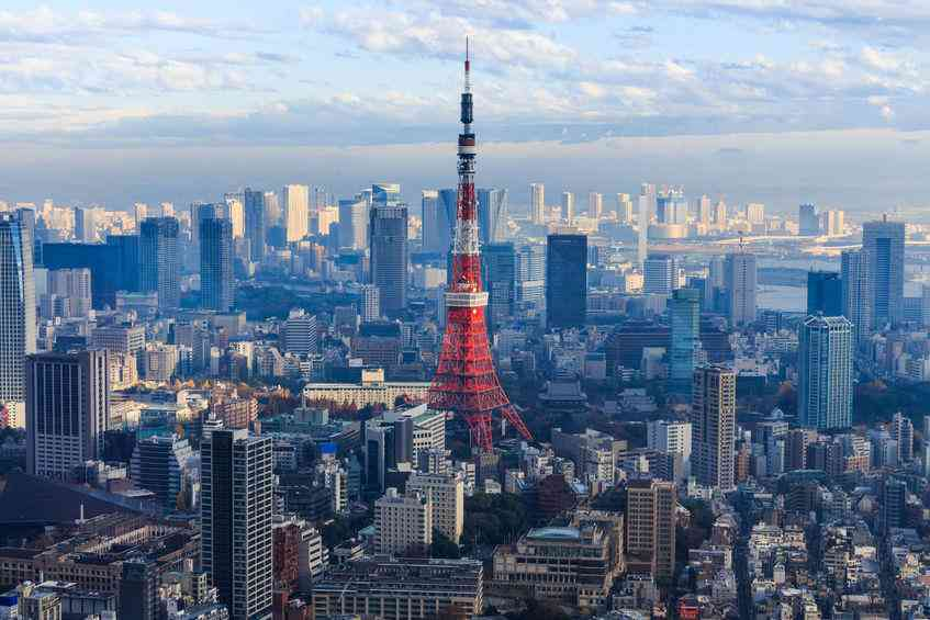 東京タワーが好きな人
