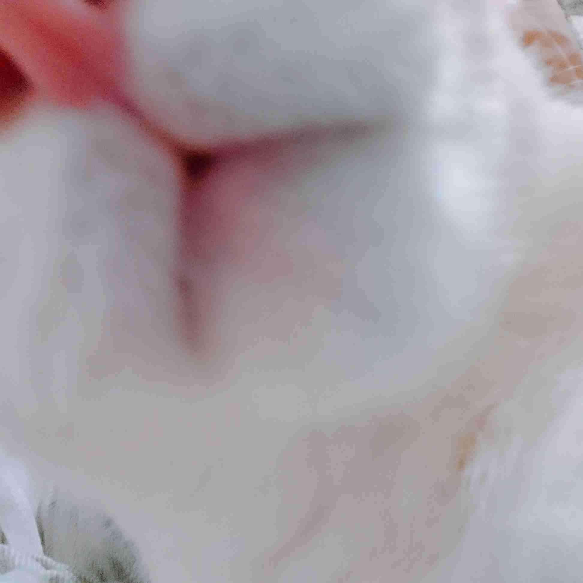独身一人暮らし猫飼いさんが集まるトピ