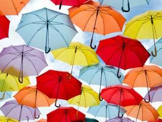 梅雨入り前の晴れ日!何しますか?