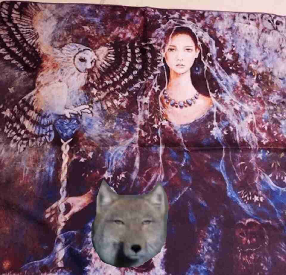 工藤静香、「次女がモチーフ?」注目のライブグッズがお目見えでファン騒然