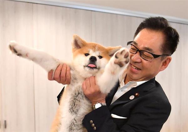 秋田犬マサルみるみる成長 来日のザギトワ選手が近況報告、大阪弁で「儲かりまっか?」