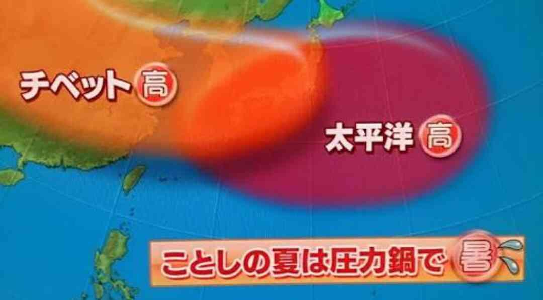 広島市 熱中症の疑いで高齢女性が死亡 全国で1500人超が救急搬送