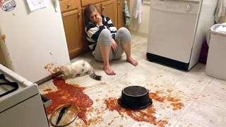 【微閲覧注意】料理の失敗作がみたい!
