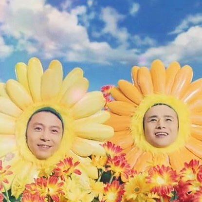 花と芸能人の画像