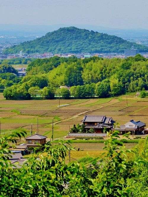 奈良観光、お土産のおすすめ 見所を教えてください。