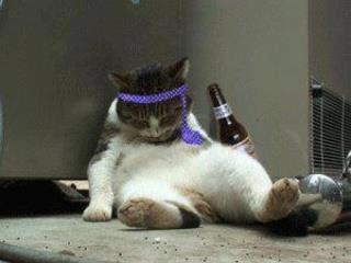 酔っ払い規制条例あったらいいと思いませんか?