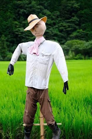 ナオト・インティライミが着てそうな服を貼るトピ