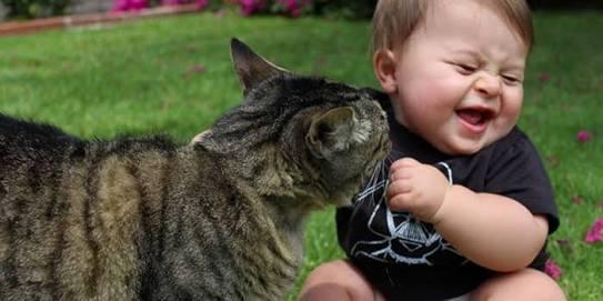 笑える子育て体験談教えてください