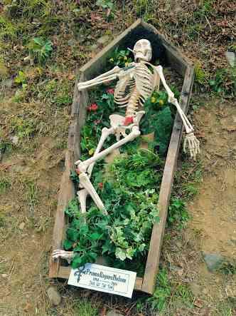 【閲覧注意】西城秀樹さんの「骸骨」は不謹慎か、フジロック「追悼アート」に賛否