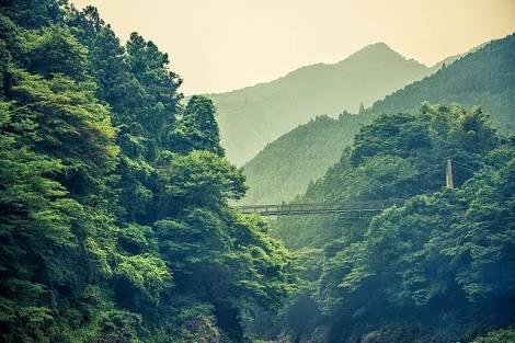 東京の街の特色を田舎者に一言で教えて下さい(^^)