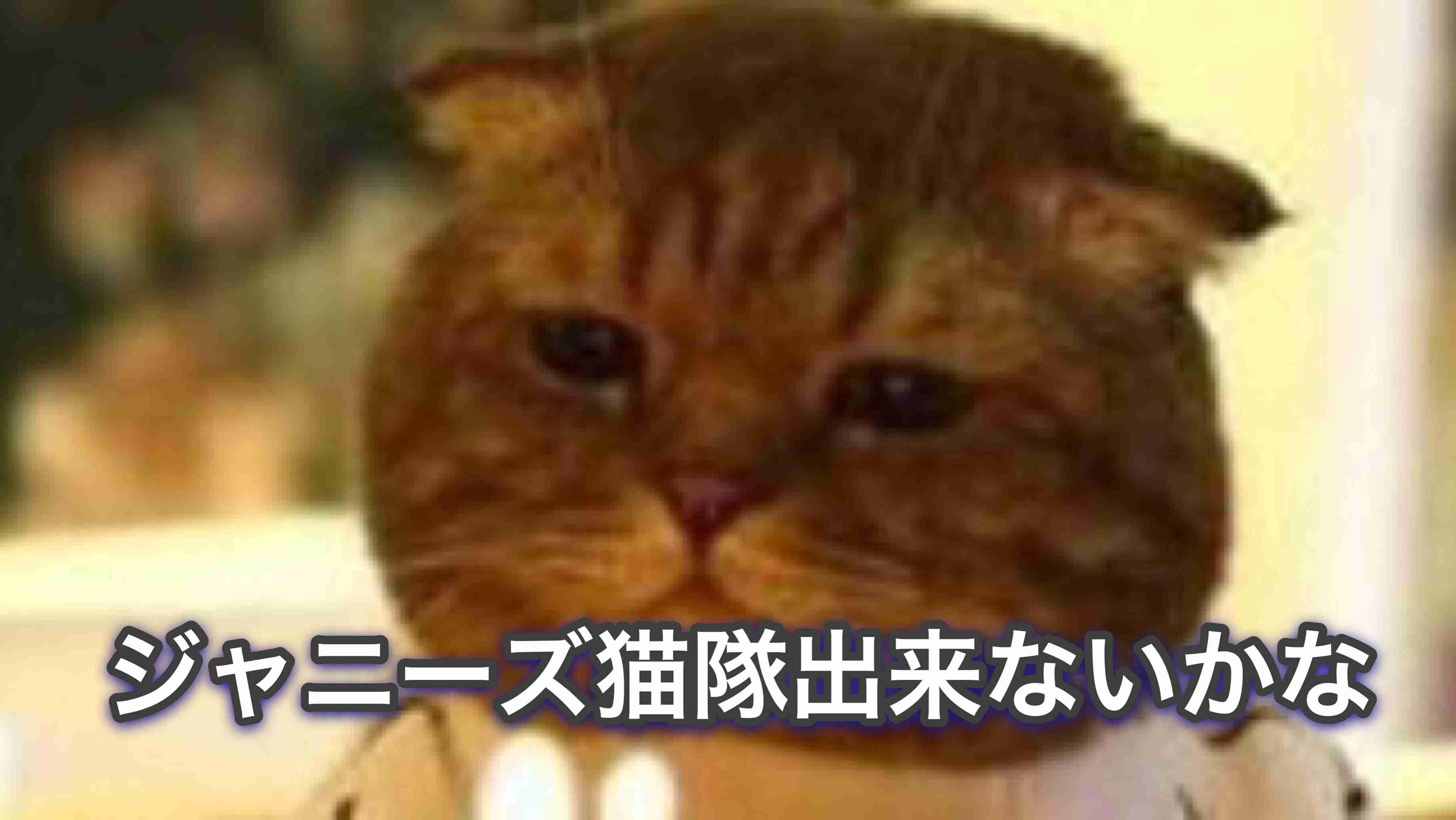 ジャニーズJr.好きな人集合!Part6