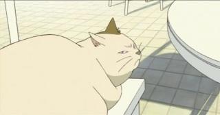 同居するニワトリ達に、様々なポーズを見せるのが日課の猫さん。ニワトリ達も興味津々のよう