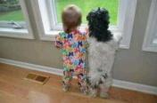 犬と共に生きる。|稼農楓(SUPER☆GiRLS)オフィシャルブログ 「稼農楓のふわふわ日記」 Powered by Ameba