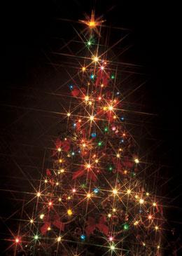 クリスマスを一人で過ごすことのメリットを語り合いましょう