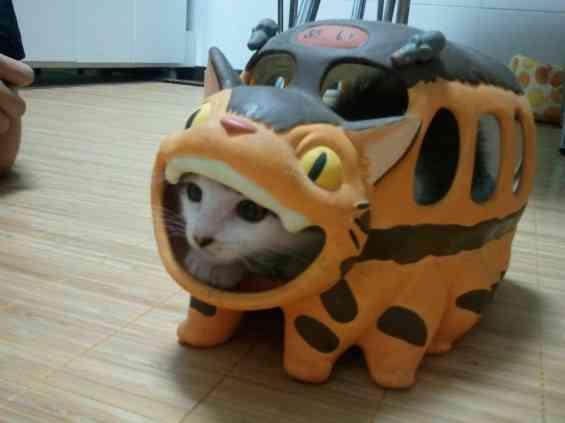 となりのトトロの「ネコバス」、ついに発見される
