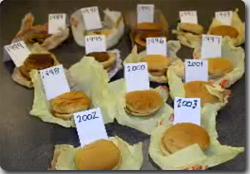 マクドナルドのハンバーガー、18年もの : カラパイア