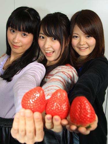 平成のキャンディーズがデビュー!デビューCDを2枚以上買ったら1分間希望メッセージ