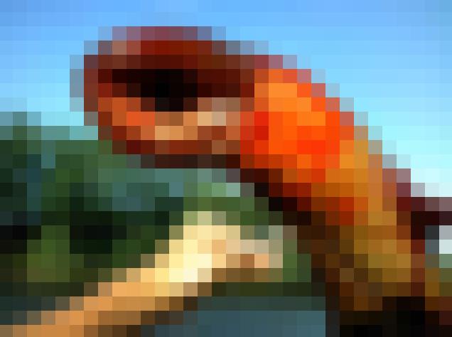 【超閲覧注意!】ニュージャージー州の海でエイリアンのような謎のクリーチャーが捕獲され話題に