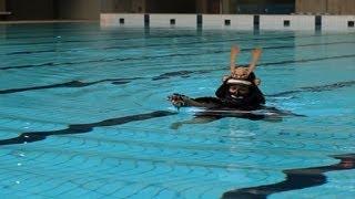 甲冑姿で泳ぐ日本の伝統泳法 - YouTube