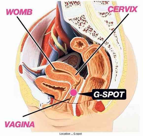 Gスポットが見つけやすくなる? 女性のセックスライフが劇的に変化するかもしれない「Gショット」