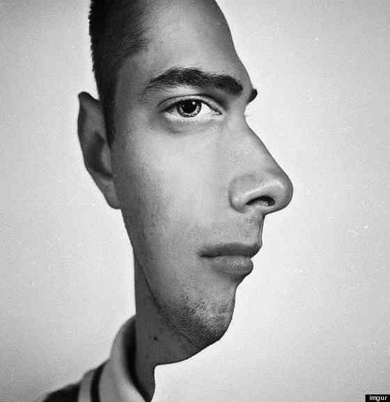 この顔写真、顔の向きは正面?横向き?