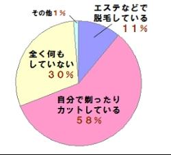 外国人「日本人はなぜアンダーヘア処理をしないの?」