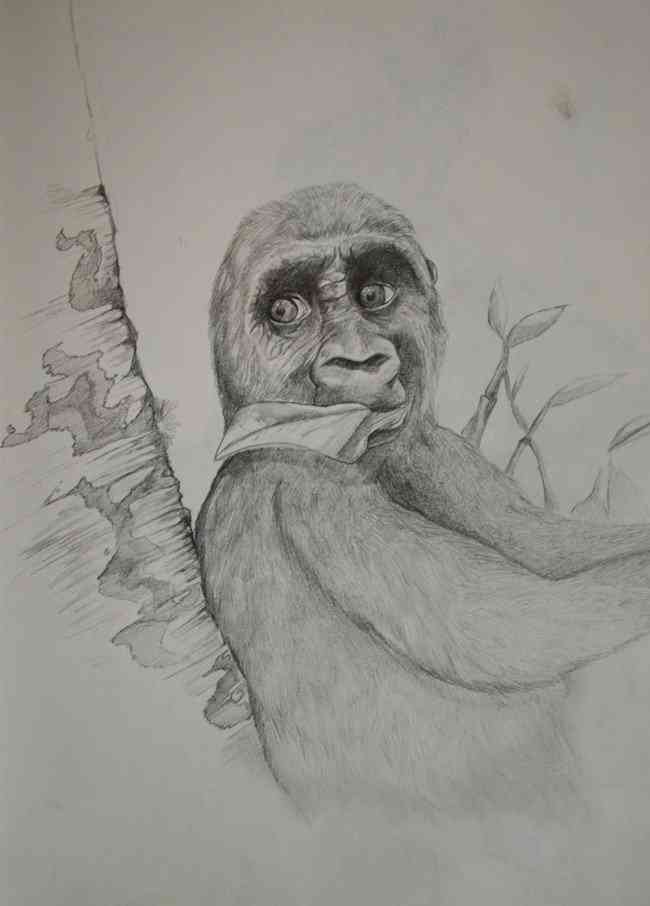 「25年かけてここまで描けるようになった」2歳から25歳までの絵の進歩がネットで人気に