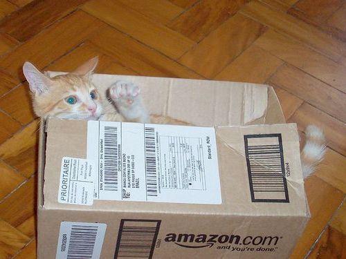 テレ東、Amazonで買った商品だけで1カ月暮らす番組を放送へ