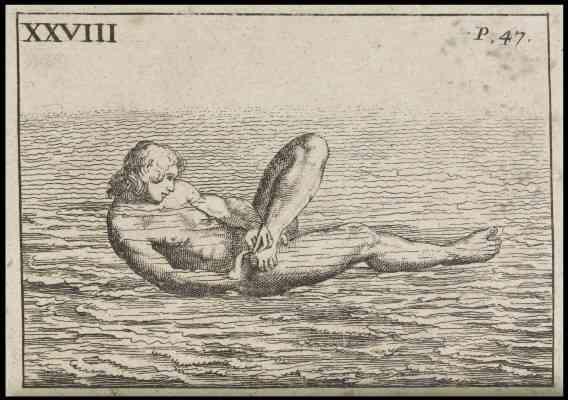17世紀のフランスの、水泳読本「芸術的に泳ぐ方法」が突き抜けていた