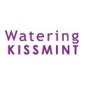 Kis-My-Ft2出演のキスミントのCMwwww