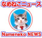 津田覚公式サイトnameneko.com なめんなよ どんな方法で猫を立たせているの?