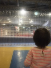モデルSHIHO、娘の格闘技志望を心配「やりたいって言い出したらどうしよう」