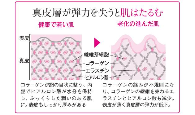 【朗報】やっぱりコラーゲンは食べても美肌効果があるらしい!!