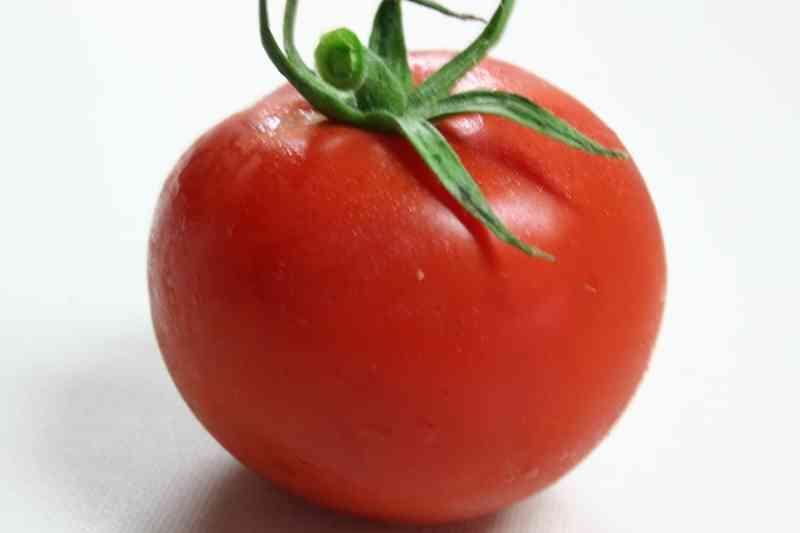 小田急線にトマトが乗っているとツイッターで話題に