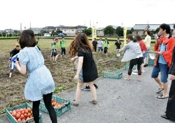 恋の始まりはトマト投げ 八代市で婚活イベント-熊本のニュース│ くまにちコム