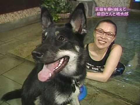 柴田理恵と愛犬のいいはなし - YouTube