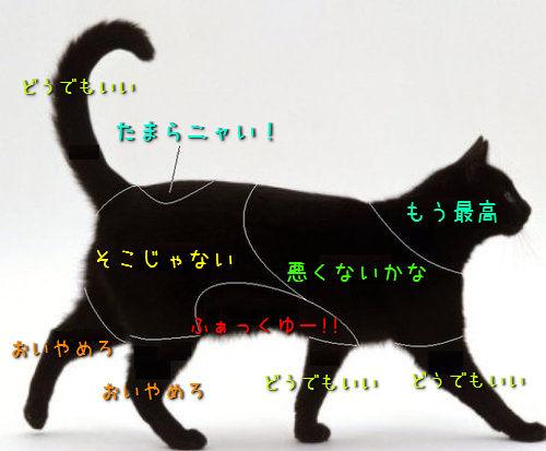 「猫がさわると喜ぶ場所」と「犬がさわると喜ぶ場所」の比較がおもしろすぎるwww