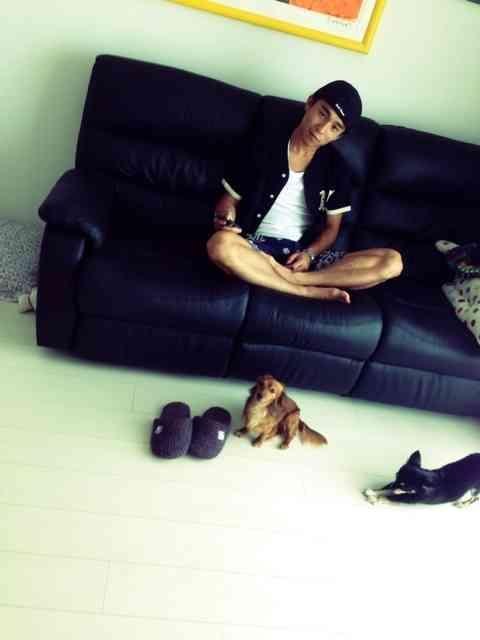 中尾明慶、家庭内の惨事明かす「ペットとルンバ飼ってる方は気をつけて」