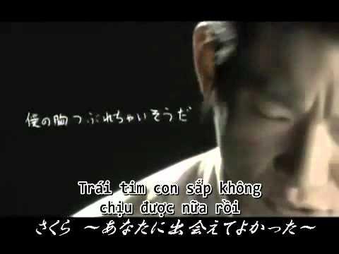 SAKURA  - Takano Kenichi [VIETSUB] - YouTube