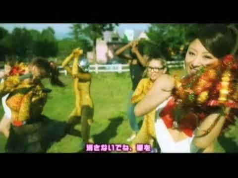 Bomber HEY!! / 愛は備長炭パートⅡ - YouTube