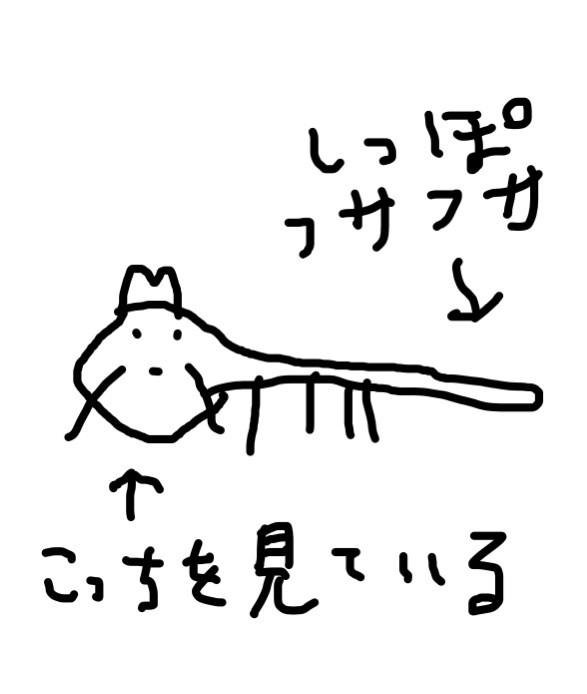田辺誠一さんが描いたタヌキをご覧ください