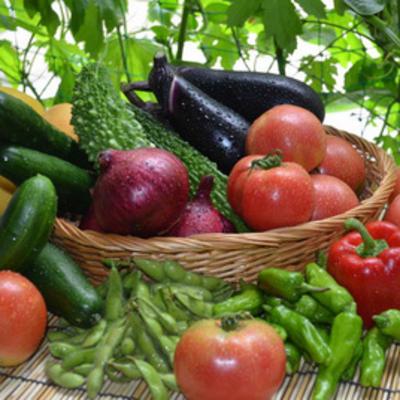 野菜ジュースを飲めば野菜を食べたことになるのか? …microdiet.net - 2377 - | ダイエットクラブNEWS - 運動や食事などを含めた健康関連の情報をお届けします