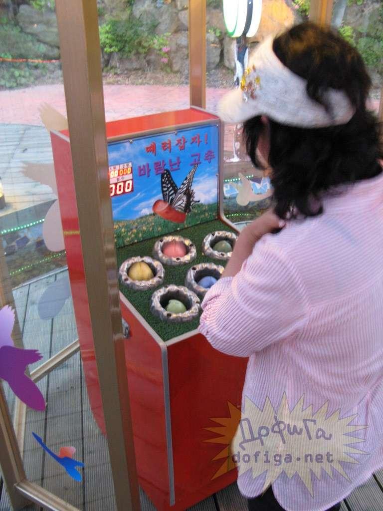 【下ネタ注意】韓国の「セックス公園」がヤバすぎるww