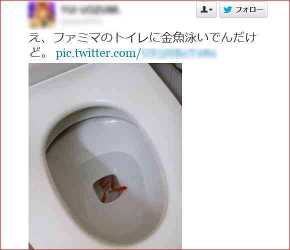 【不思議】コンビニのトイレに入ったら驚いた「ファミマのトイレに金魚泳いでんだけど」   ロケットニュース24