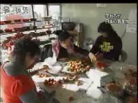 守れるか 日本の農産物 Copy culture of Korea - YouTube