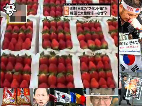 苺がパクられた Copy CUlture of South Korea - YouTube