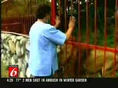 Woman Lion Injured Forest Columbia - YouTube