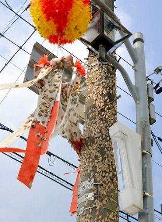 夏の異変で蛾の一種のマイマイガが大量発生! 福井県大野市 : 生き物のすべて - 生き物まとめブログ