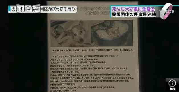 「犬の命救うため寄付を」→実は死んだ犬でした…動物愛護団体代表を詐欺容疑で逮捕