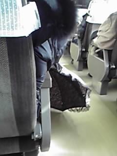電車内でも、日傘を差したまま・・・ : 'ぬるい'雑感記